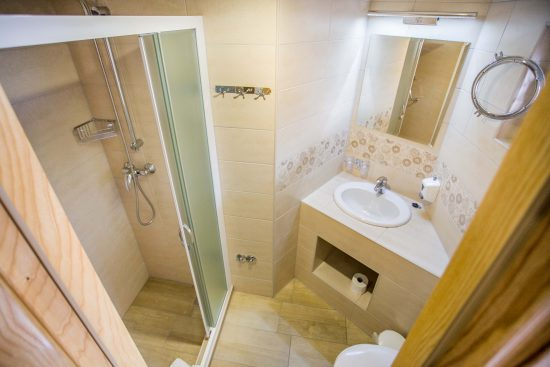 MS Captain Bota Bathroom